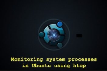 Monitoring system processes in Ubuntu using htop.