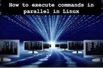 How to execute commands in parallel in Linux