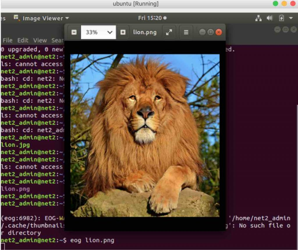 How To Display Images In The Command Line In Linux/Ubuntu