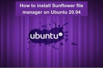 How to install Sunflower file manager on Ubuntu 20.04