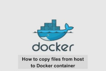 How to copy files from host to Docker container